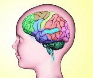 anak-otak-300x250